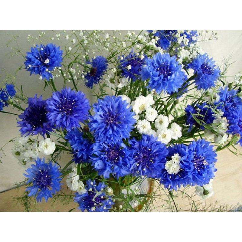 White and blue flowe...