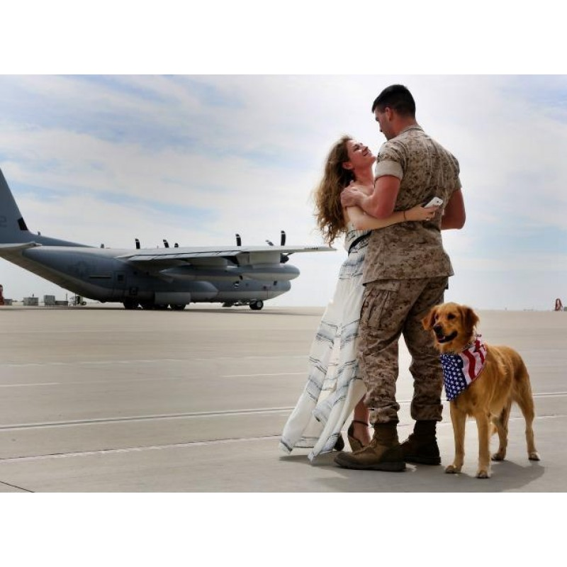 Military Wife And Do...