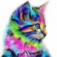 Cat Colors Diamond Painti...
